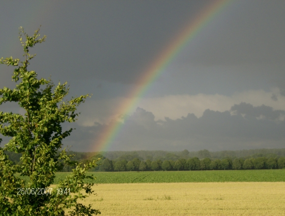 Regenbogen 007