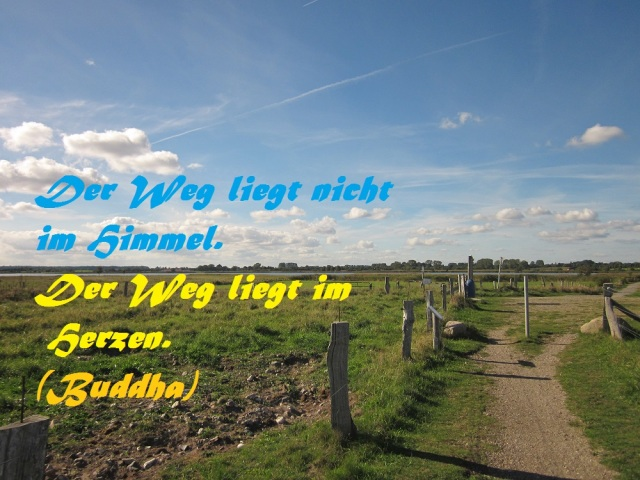 spruch-der-woche-weg-22-09-2016